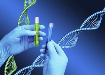 Medicina Genètica Barcelona